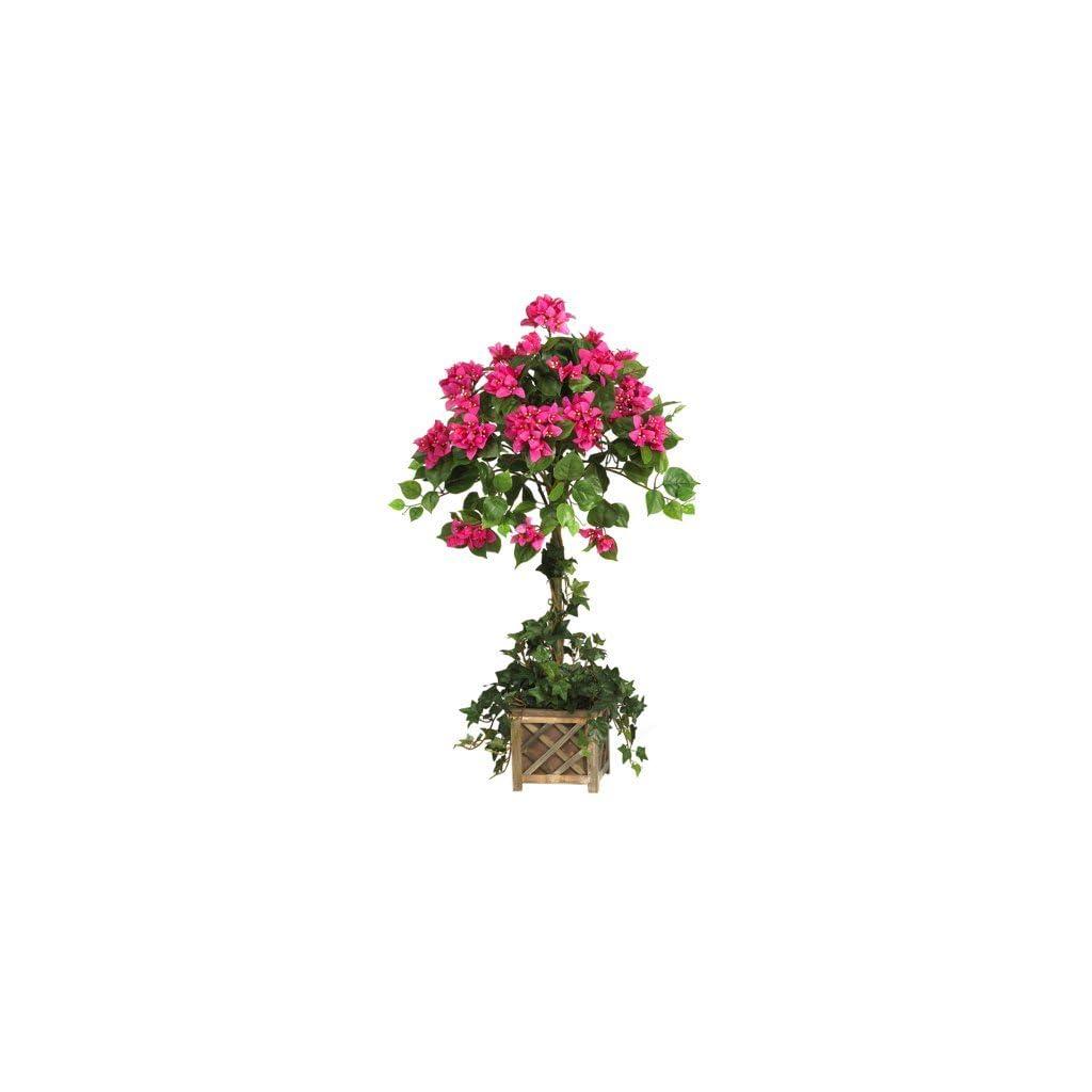 Bougainvillea-Topiary-wWood-Box