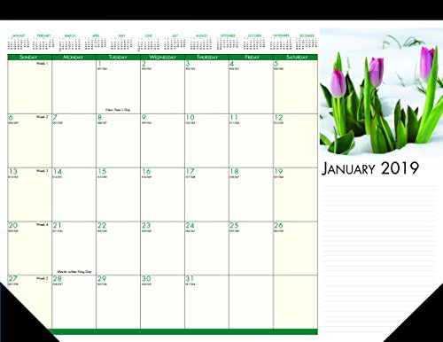 House of Doolittle 2019 Monthly Desk Pad Calendar, Earthscapes Flowers, 18.5 x 13 Inches, January - December (HOD1596-19)
