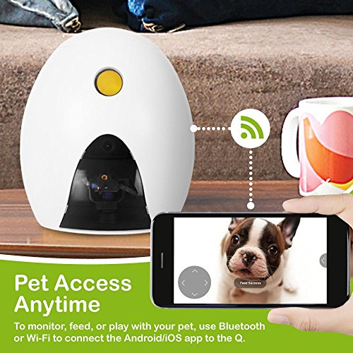 FUNPAW Q Cat & Dog Treat Dispenser w/Toy Laser: Monitor from Anywhere w/the App, 720p Hi-Res Pet Camera & 2-Way Audio by FUNPAW (Image #2)