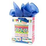 "Hallmark 13"" Large Gift Bag with Tissue Paper (Bright Cake) for Birthdays, Parties and More: more info"