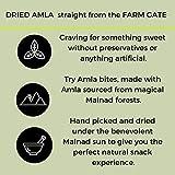 GO DESi Dried Gooseberry (Amla)Bites