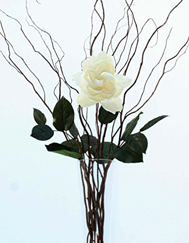 Tall Curly Willow (Green Floral Crafts DIY White Rose, Curly Willow and Salal - Vase NOT Included)