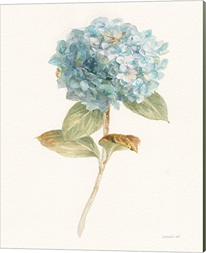 (Garden Hydrangea by Danhui NAI Canvas Art Wall Picture, Museum Wrapped with Sage Green Sides, 16 x 20 inches)