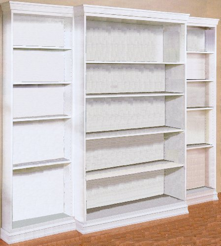 Build Your Own BOOKCASE Custom Library Bookshelves Any Size Pattern DIY PLANS; So Easy, Beginners Look Like Experts; PDF Download Version so you can get it NOW! (English Edition)