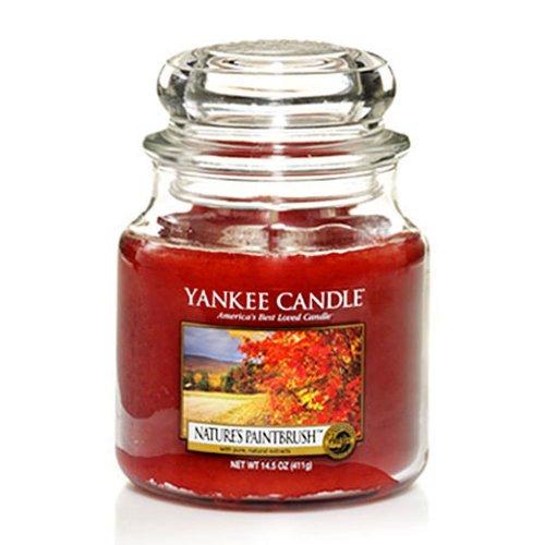 Yankee Candle Nature's Paintbrush - Medium Housewarmer Jar 14.5 Ounce Natures Paintbrush -