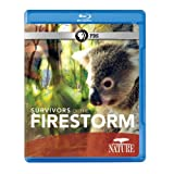 Nature: Survivors of the Firestorm [Blu-ray] [Import]