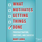 What Motivates Getting Things Done: Procrastination, Emotions, and Success | Mary Lamia