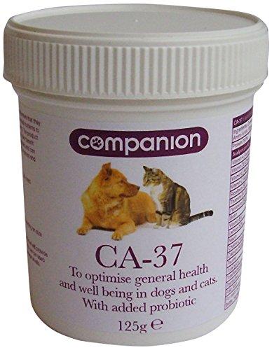 battle-hayward-bower-companion-ca-37-pet-supplement-125g