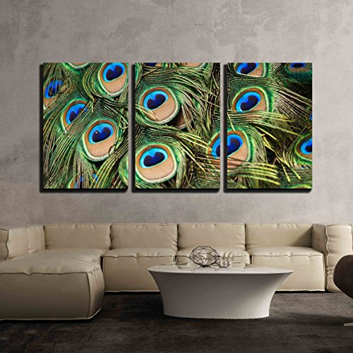 vas Wall Art - Beautiful Vivid Peacock Feathers - Modern Home Decor Stretched and Framed Ready to Hang - 24