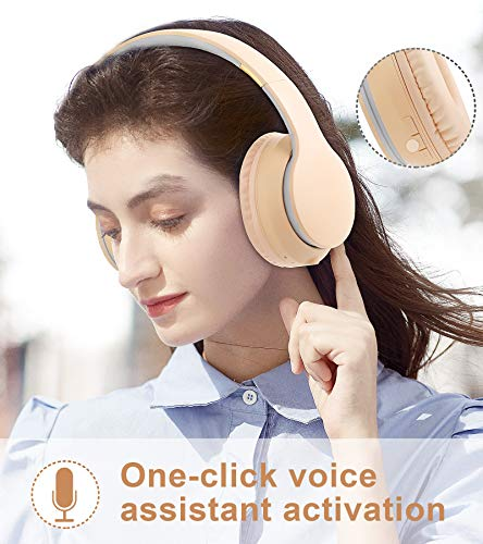 Lobkin Over The Ear Wireless Headphone with Microphone, Hi-Fi Stereo Noice Reduce Earphones for Class, Home Office, Game/TV/PC/Phone Comfortable Foldable Bluetooth Headphones