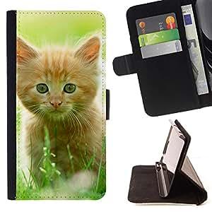 - Summer Sunny Cat Pet Red Maine Coon - Estilo PU billetera de cuero del soporte del tir???¡¯????n [solapa de cierre] Cubierta- For Samsung Galaxy S4 IV I9500 £¨ Devil Case £©