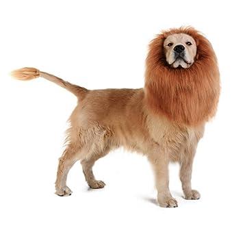 DREAMOWL Dremowl - Peluca de León para Perro o Mascota, Ideal como Regalo de Navidad