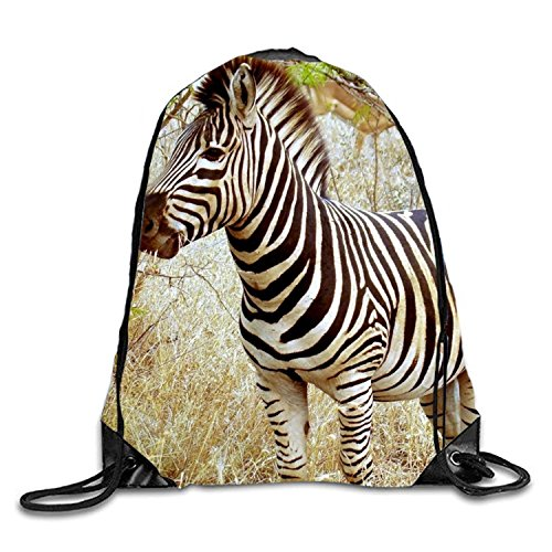 Drawstring Backpack Beautiful Zebra In South Africa Men & Women Yoga Dance Travel Shoulder Bags by AyxjlSv