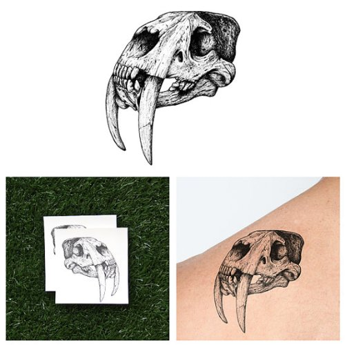 Simple Tiger Costume Makeup (Tattify Sabertooth Tiger Temporary Tattoo - Tusk 'Til Dawn (Set of 2) - Other Styles Available and Fashionable Temporary Tattoos - Tattoos that are long lasting and Waterproof)
