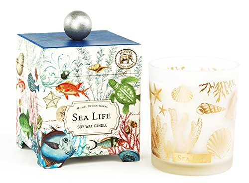 Michel Design Works Gift Boxed Soy Wax Candle, 14-Ounce, Sea Life