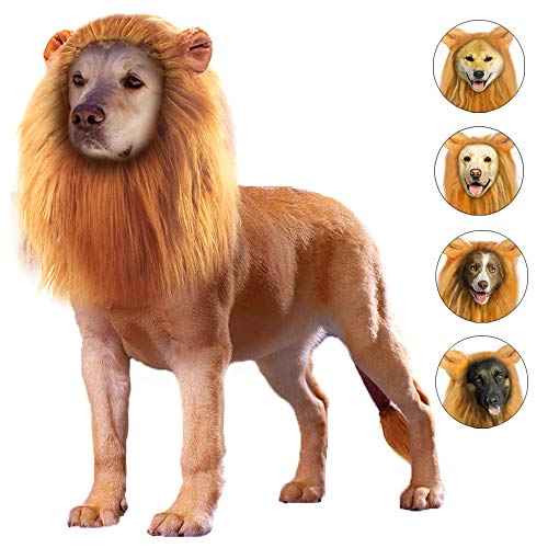 Photos Of Dogs In Halloween Costumes (GALOPAR Lion Mane for Dogs Realistic Lion Wig Dog Lion Costume, Halloween Christmas Funny Dog Costumes Photo Shoots Entertainment, Suitable for Medium and Large Sized)