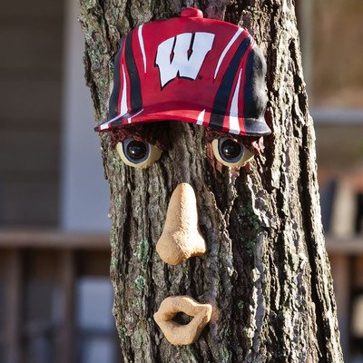 NCAA Forest Face NCAA Team: Wisconsin