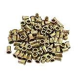 uxcell 100 Pcs 5/16-18 Bronze Tone Stainless Steel Thread Rivet Nut Insert Nutserts