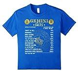 Gemini Facts T-Shirt Gemini Awesome Horoscope