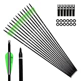 Pointdo 12pcs 30Inch Archery Carbon Arrow Hunting And Practice Targeting Arrow with Replaceable Tips and 3' Light Vanes For Recurve Bow& Compound Bow