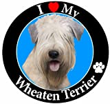 E & S Pets Car Magnet, Soft Coated Wheaten Terrier