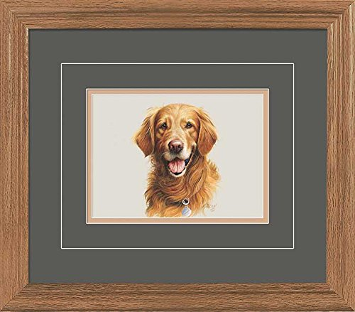 Golden Retriever Portrait GNA Deluxe Framed Print by Jim Killen