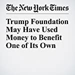 Trump Foundation May Have Used Money to Benefit One of Its Own | Steve Eder