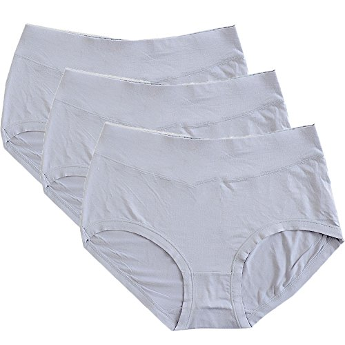 Warm Sun Women's Bamboo Viscose Fiber Multi Pack 3 Plus Size Panties US Size S-XXXL/5-10 (8/XL, Gray)