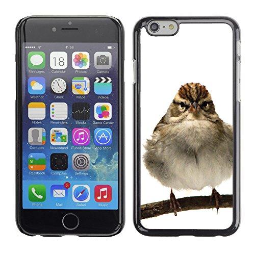 "Premio Sottile Slim Cassa Custodia Case Cover Shell // F00014130 oiseau // Apple iPhone 6 6S 6G PLUS 5.5"""