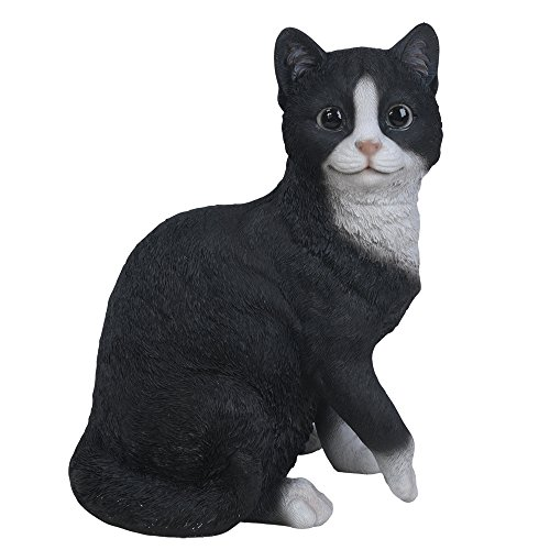 Resin Painted (Pacific Giftware Realistic Bicolor Black and White Cat Kitten Collectible Figurine Amazing Detailed Glass Eyes Hand Painted Resin Life Size 10 inch Figurine Perfect for Cat Lover Collectible)
