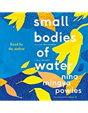 Small Bodies of Water