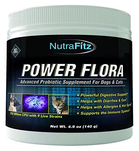 POWER FLORA Probiotics Improves Constipation product image
