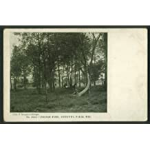 Horse & buggy in Pounds Park Chippewa Falls WI undivided back postcard 1900s