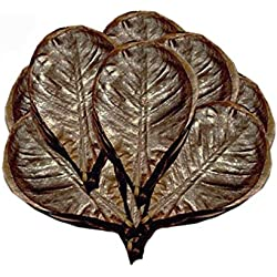 SunGrow Giant Catappa Leaves x 10 pcs - Sun Baked Leaves to Breed Live Aquarium Fish & Shrimp