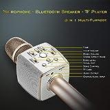 Bluetooth Karaoke Microphone Dual Speaker Loud 12W