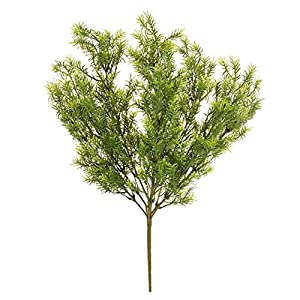 Darice Asparagus Fern Bush: Green, 19 inches 44