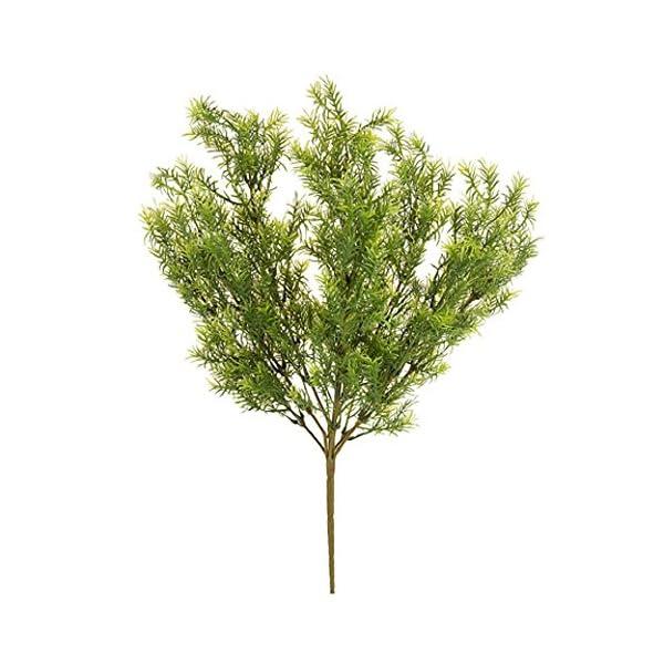 Darice-Asparagus-Fern-Bush-Green-19-inches