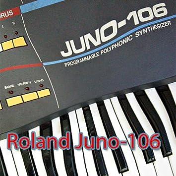 Roland D-10/110 enorme y original de fábrica nueva biblioteca de sonido creado y editores en CD: Amazon.es: Instrumentos musicales