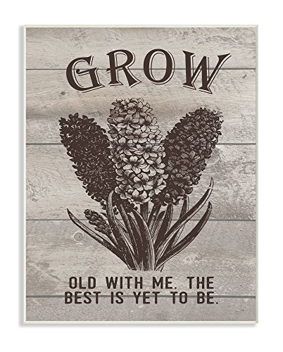 Stupell Home Décor Grow Old With Me Vintage Hyacinth Wall