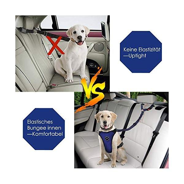 51XnUbC2KnL SlowTon Hundesitzgurt, 2 Packungen Haustier Hund Katze Auto Sicherheitsgurt für alle alltäglichen und sportlichen…