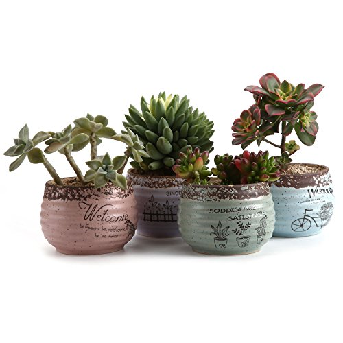 T4U 3.75''Rustic Stlye Round Sets Sucuulent Cactus Plant Pots Flower Pots Planters Containers Window Boxes 1 Pack of 4 by T4U