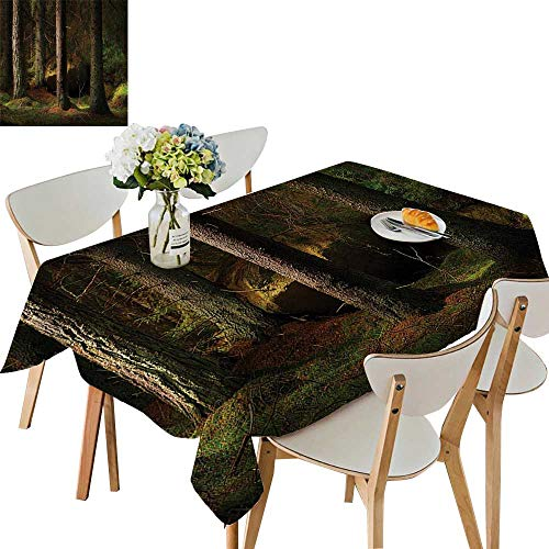 UHOO2018 Square/Rectangle Indoor and Outdoor Tablecloth Deep Dark in The Enchanted Forest with Magical Trees in Evening Light Mystical Theme Restaurant Party,54 x120inch. ()