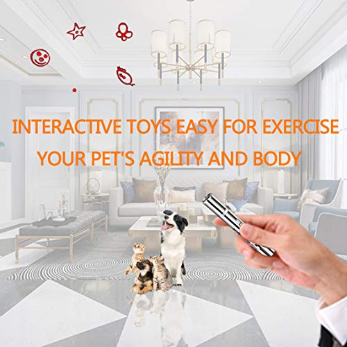 DMY Cat Toys Interactive-7 in 1 Function Chaser Toy-USB Rechargeable-Multi Pattern Funny & Mini Flashlight Interactive LED Light Entertain Training Tool for pet 5