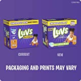 Luvs (LUVSD) Diapers Size 4, 172 Count - Luvs Ultra Leakguards Disposable Baby Diapers, ONE MONTH SUPPLY