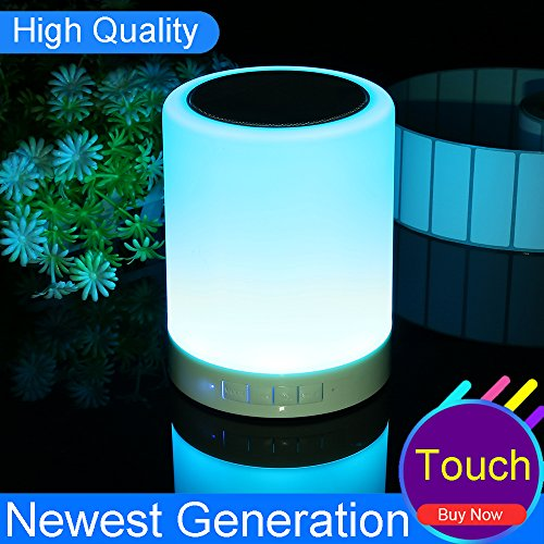Night light speaker