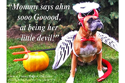 [GOOD DEVIL- greeting card set 1 single card & env 5x7 in (12.7x17.78 cm) Ivory smooth folded blank inside funny humorous color photo 4x6 in (10.16x15.24 cm) on front Boxer Bulldog pet in dog] (Heavyweights Halloween Costume)