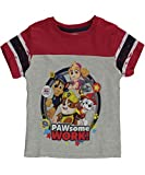 Paw Patrol Little Boys' Toddler