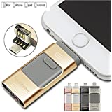 64 GB iFlash Device Memory, Data Storage - Dual USB-Flash Drive For Apple Iphone 7, 7plus, 6s, 6s plus, 6, 6 plus , Ipad air 2 , iOS-PC-Android (Gold)