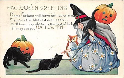 Black Cats, Owl, Witch, Whitney Made Halloween Postcard Old