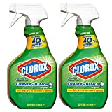 Clorox Clean-Up with Bleach, 32 fl oz Trigger Spray Bottle (Pack of 2)